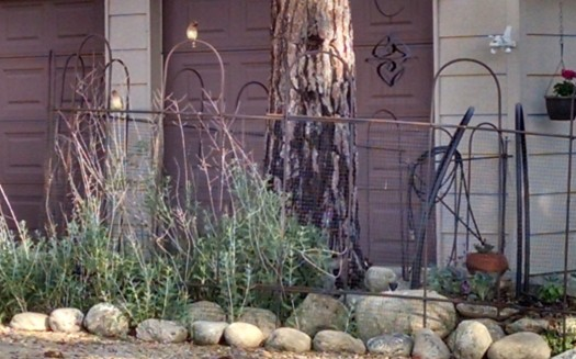 Stacked stones on the edge of my garden.  Photo:  Theresa Duncan